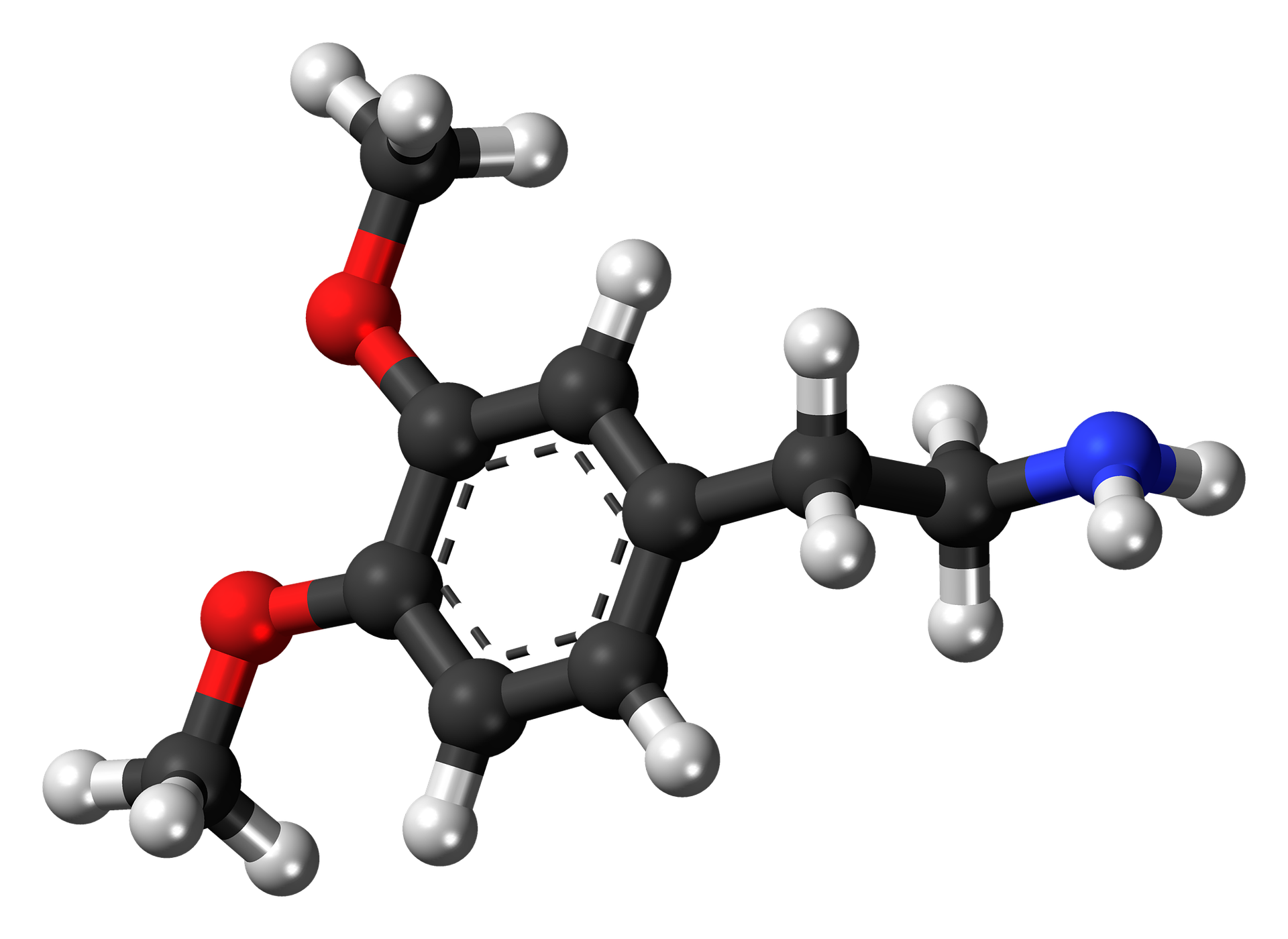graphic image of dopamine chemical structure