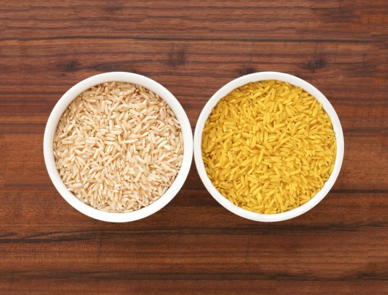 Image comparing normal rice and golden rice