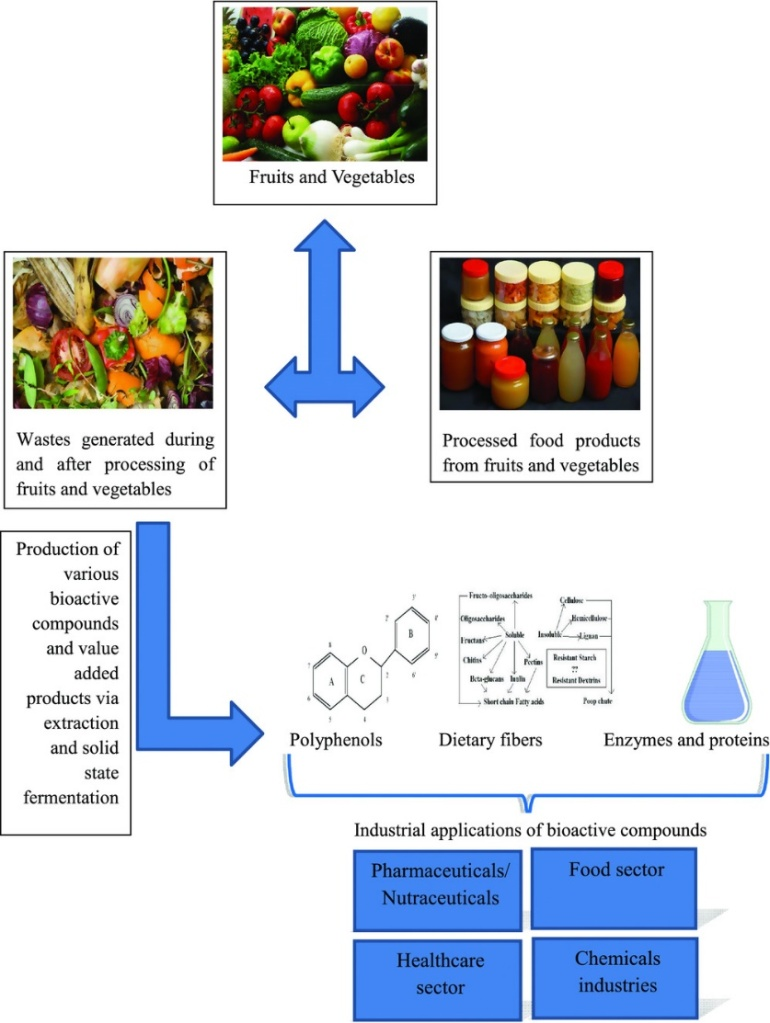How agricultural wastes and food wastes can be converted to value added goods.