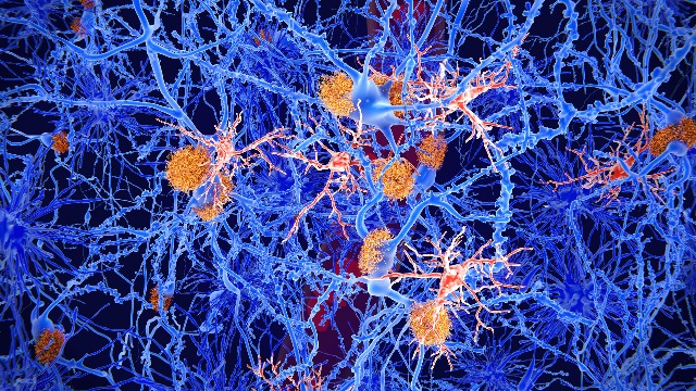 Image showing animated neurons